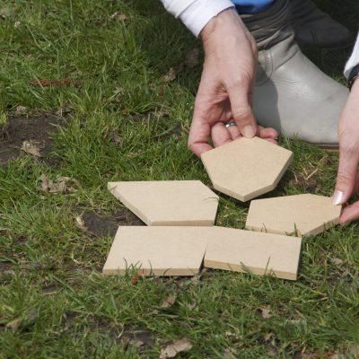 Puzzel bij De Lerende Organisatie