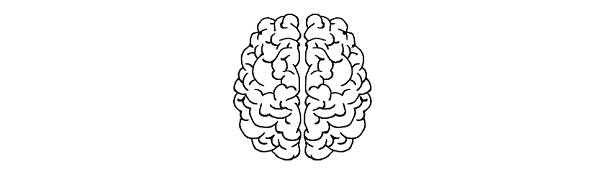 Hersenen leren